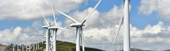 Insuring Your Wind Farm
